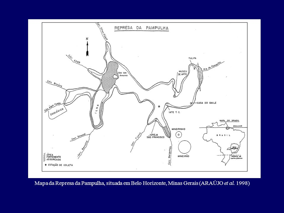 Mapa da Represa da Pampulha, situada em Belo Horizonte, Minas Gerais (ARAÚJO et al. 1998)