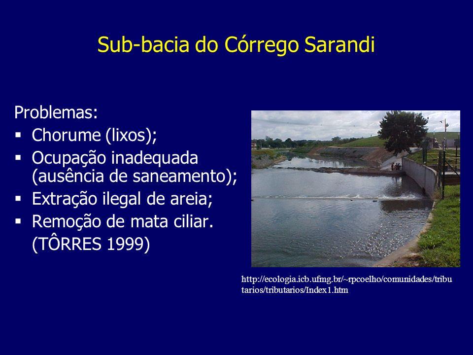 Sub-bacia do Córrego Sarandi