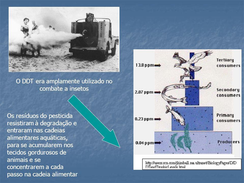 O DDT era amplamente utilizado no combate a insetos