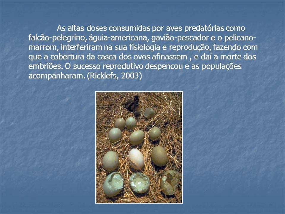 As altas doses consumidas por aves predatórias como falcão-pelegrino, águia-americana, gavião-pescador e o pelicano-marrom, interferiram na sua fisiologia e reprodução, fazendo com que a cobertura da casca dos ovos afinassem , e daí a morte dos embriões.