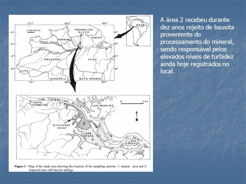 A área 2 recebeu durante dez anos rejeito de bauxita proveniente do processamento do mineral, sendo responsável pelos elevados níveis de turbidez ainda hoje registrados no local.