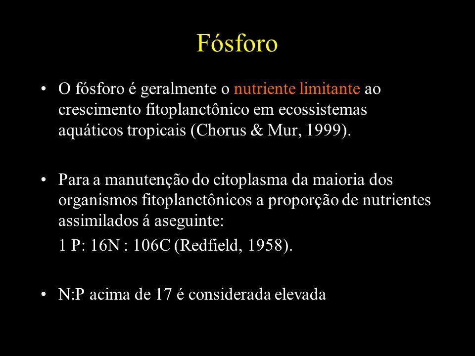 FósforoO fósforo é geralmente o nutriente limitante ao crescimento fitoplanctônico em ecossistemas aquáticos tropicais (Chorus & Mur, 1999).