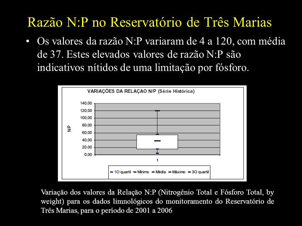 Razão N:P no Reservatório de Três Marias