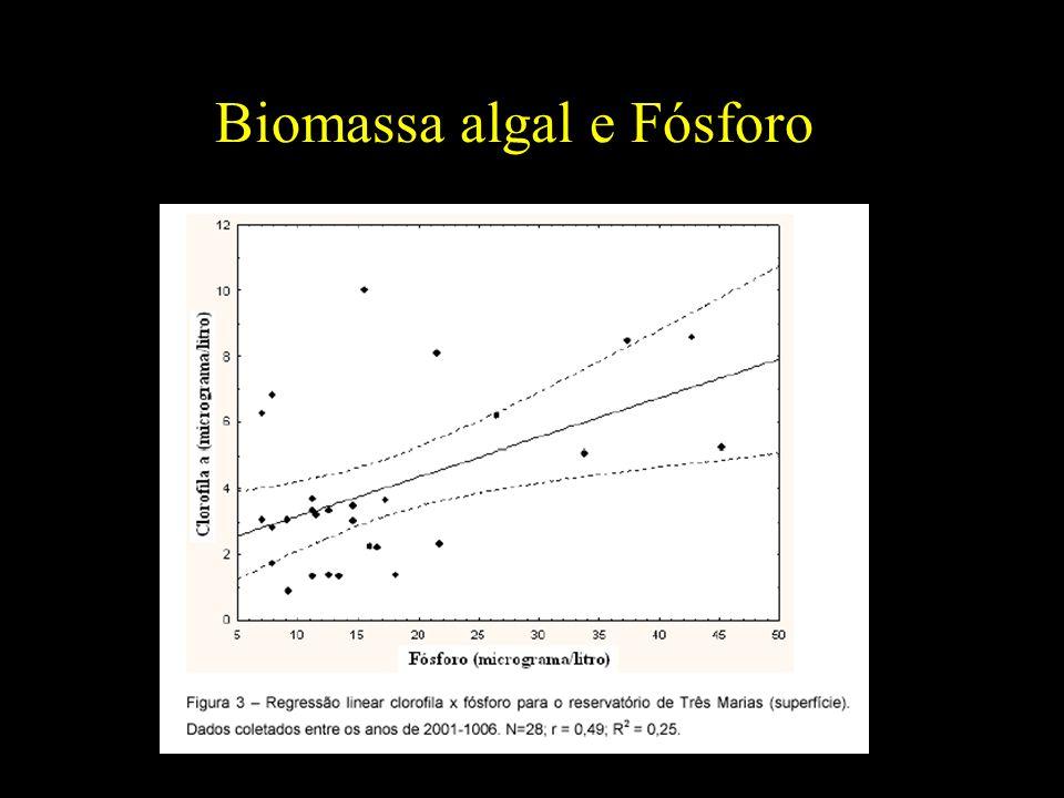 Biomassa algal e Fósforo