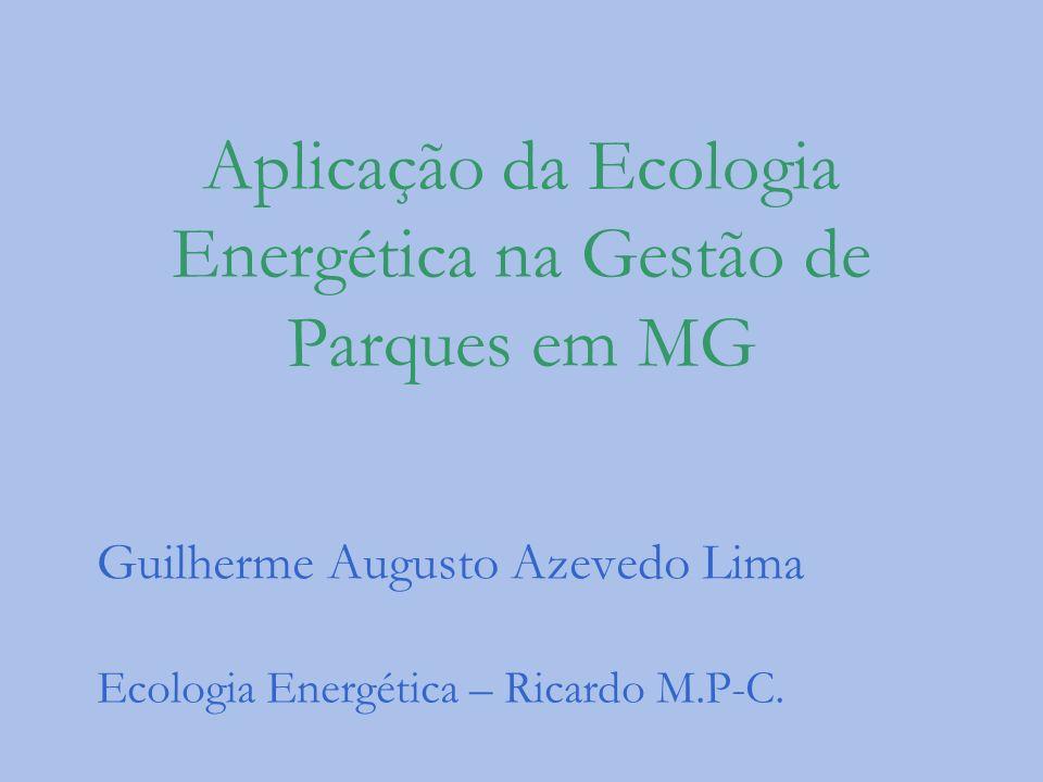 Aplicação da Ecologia Energética na Gestão de Parques em MG