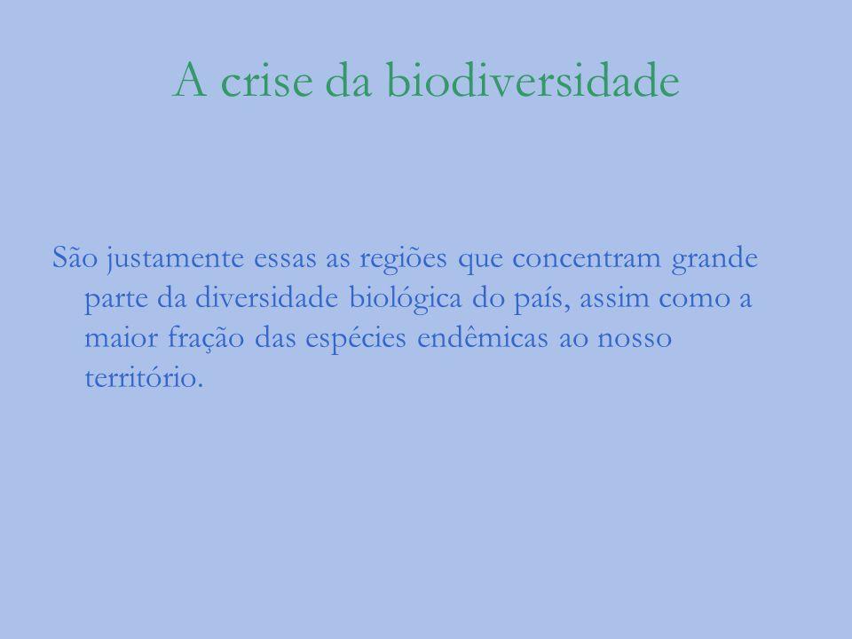 A crise da biodiversidade