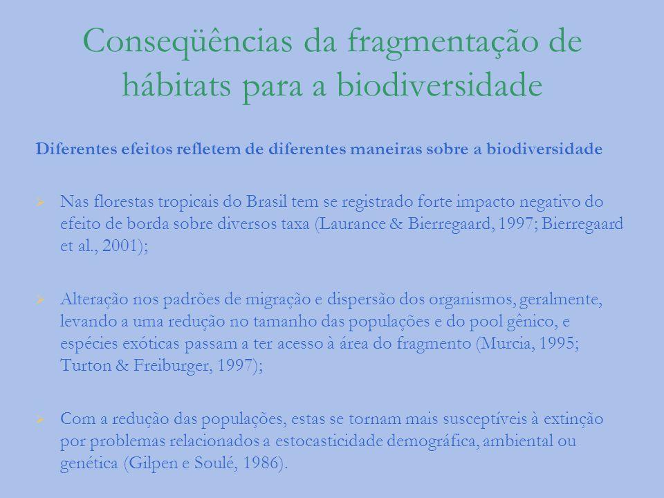 Conseqüências da fragmentação de hábitats para a biodiversidade