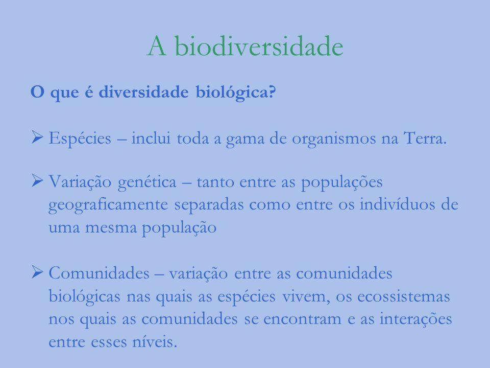 A biodiversidade O que é diversidade biológica