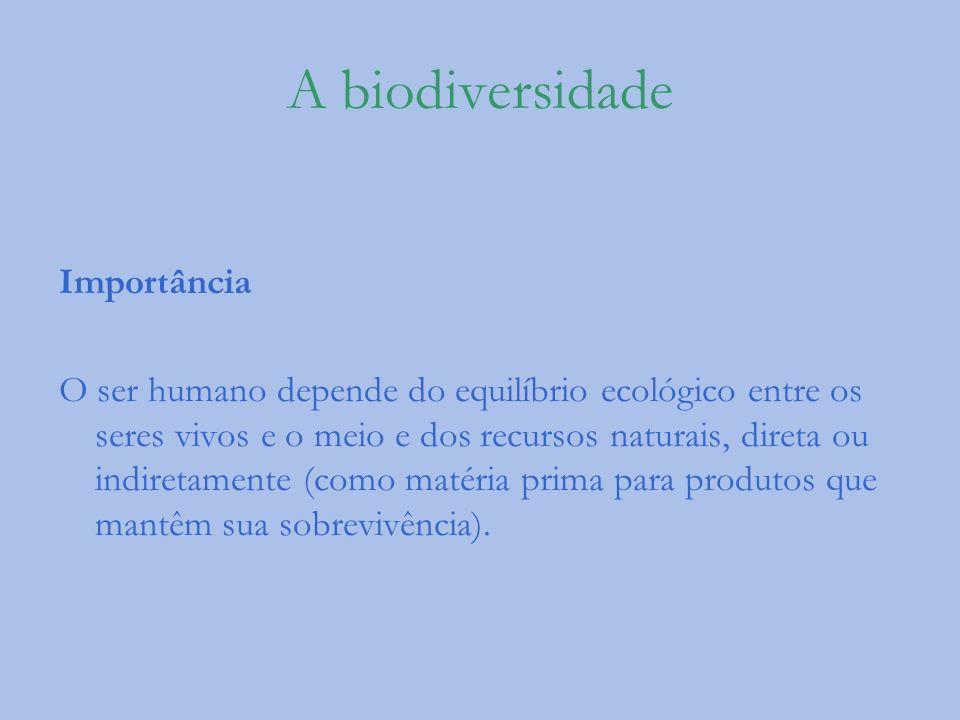 A biodiversidade Importância