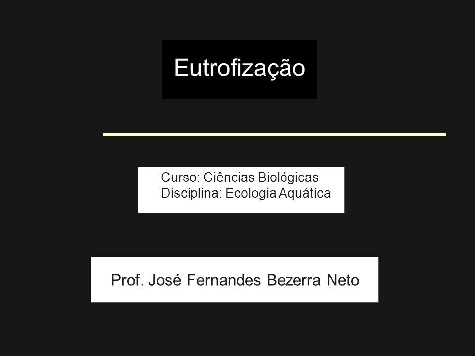 Eutrofização Prof. José Fernandes Bezerra Neto