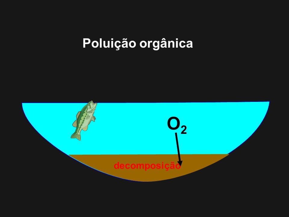 Poluição orgânica O2 decomposição