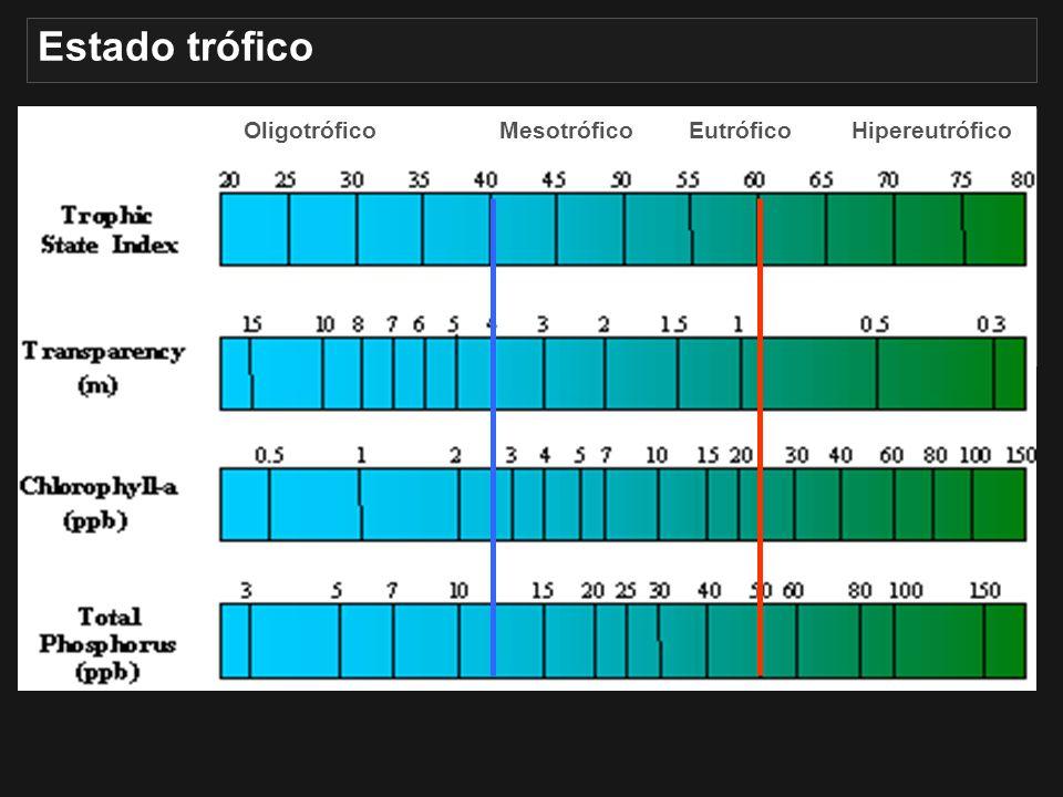 Estado trófico Oligotrófico. Mesotrófico. Eutrófico. Hipereutrófico. O índice de estado trófico de Carlson (ITC) – mais amplamente utilizado.
