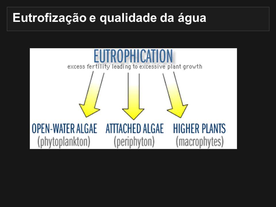 Eutrofização e qualidade da água