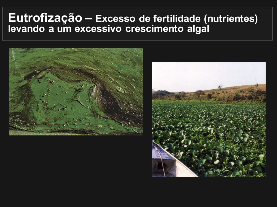 Eutrofização – Excesso de fertilidade (nutrientes) levando a um excessivo crescimento algal