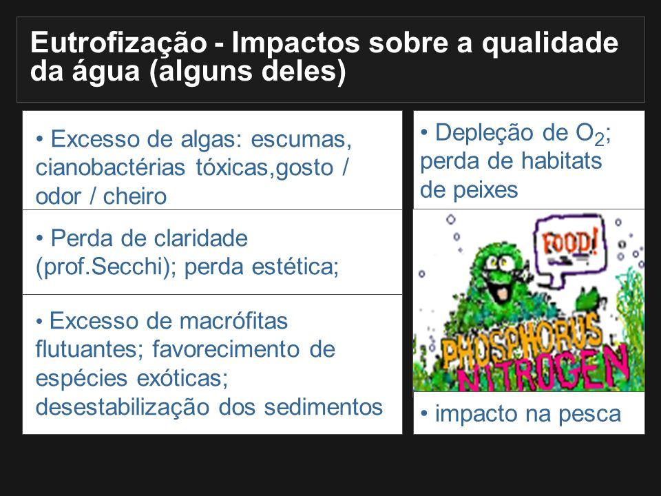 Eutrofização - Impactos sobre a qualidade da água (alguns deles)