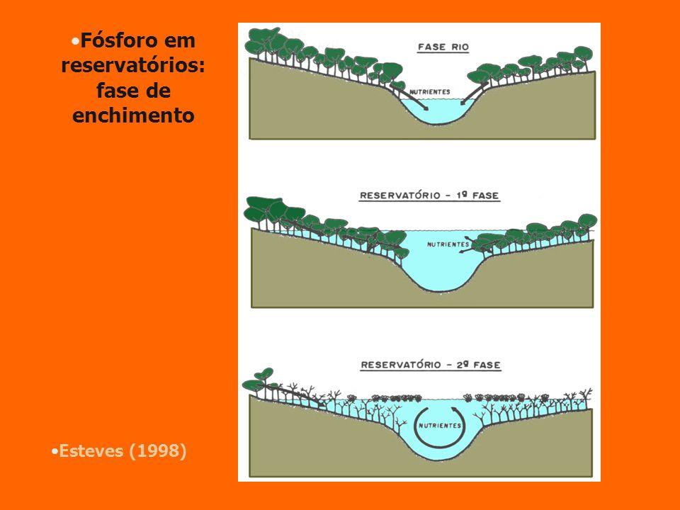 Fósforo em reservatórios: fase de enchimento