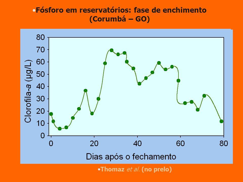 Fósforo em reservatórios: fase de enchimento (Corumbá – GO)