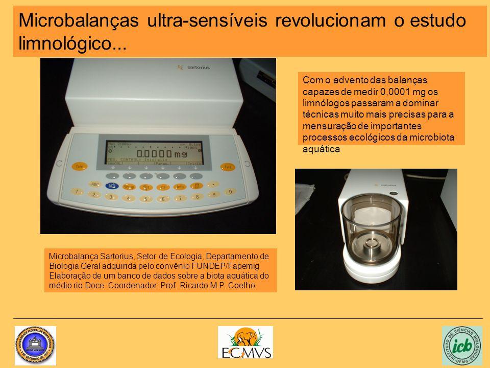 Microbalanças ultra-sensíveis revolucionam o estudo limnológico...