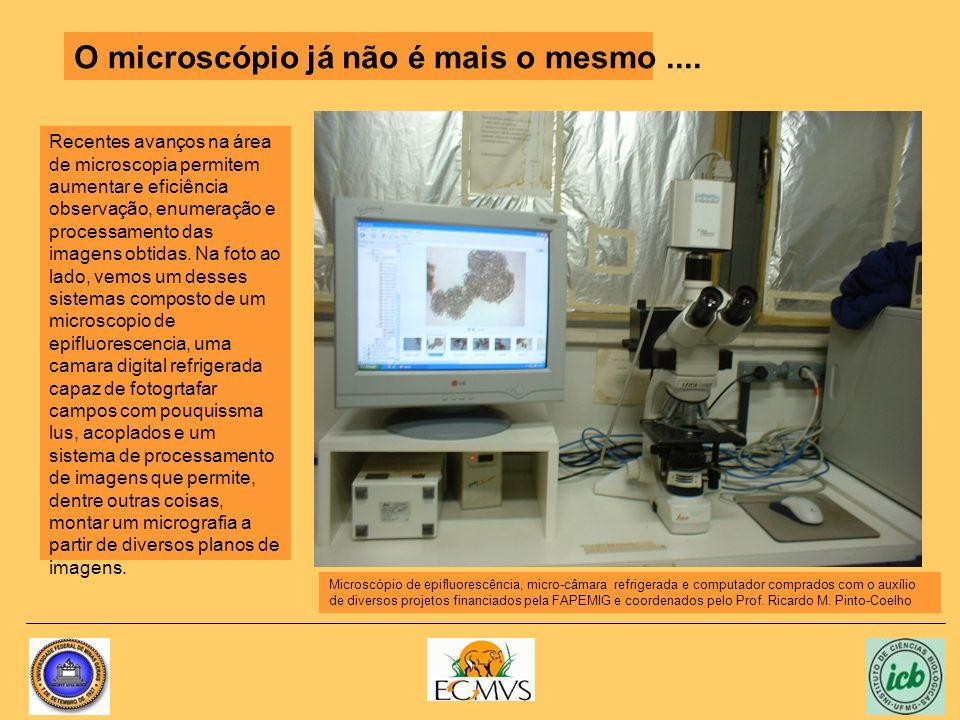 O microscópio já não é mais o mesmo ....
