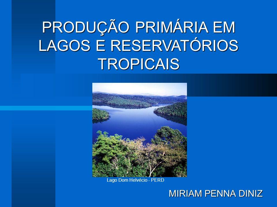 PRODUÇÃO PRIMÁRIA EM LAGOS E RESERVATÓRIOS TROPICAIS