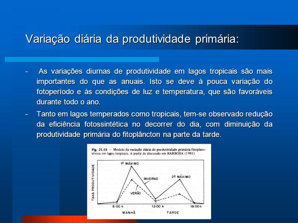 Variação diária da produtividade primária: