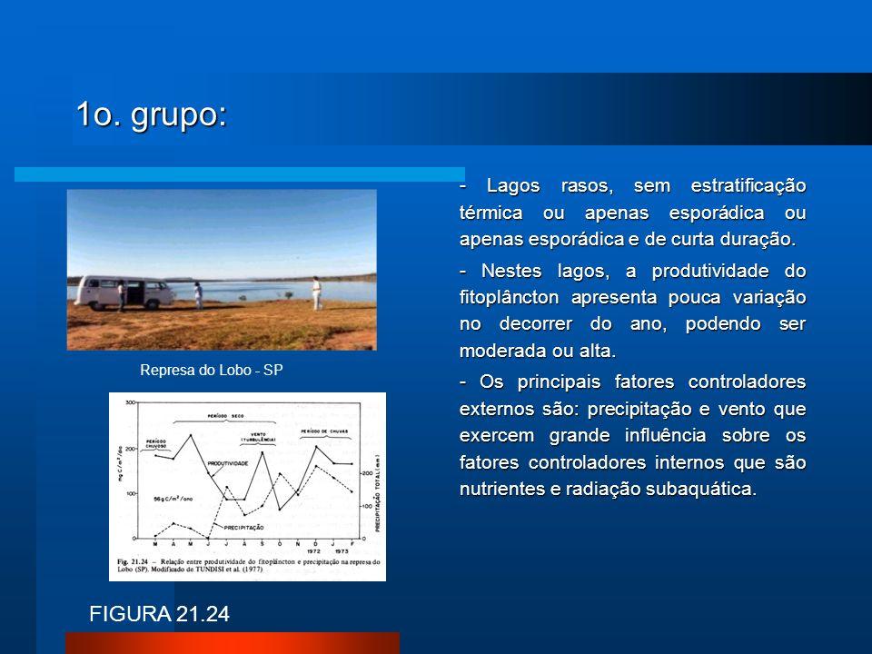 1o. grupo: - Lagos rasos, sem estratificação térmica ou apenas esporádica ou apenas esporádica e de curta duração.
