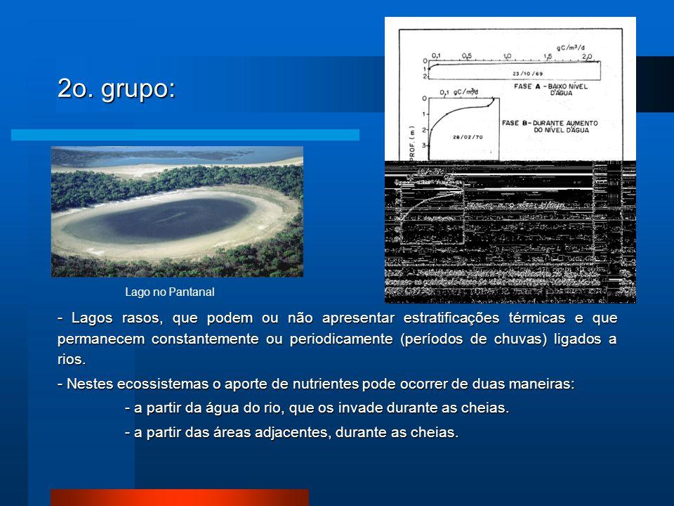 2o. grupo: Lago no Pantanal.