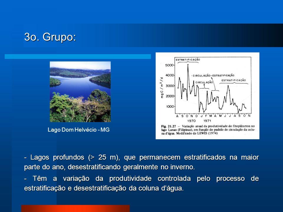 3o. Grupo: Lago Dom Helvécio - MG.