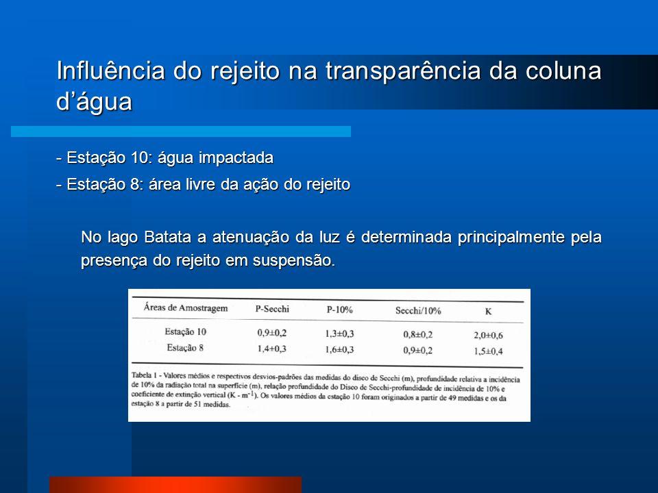 Influência do rejeito na transparência da coluna d'água