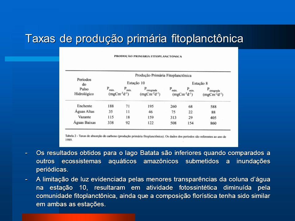 Taxas de produção primária fitoplanctônica