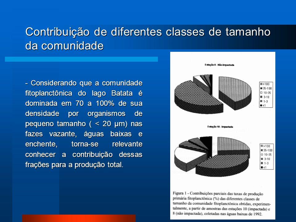 Contribuição de diferentes classes de tamanho da comunidade