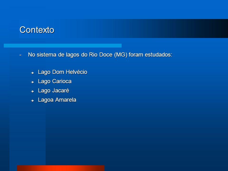 Contexto - No sistema de lagos do Rio Doce (MG) foram estudados: