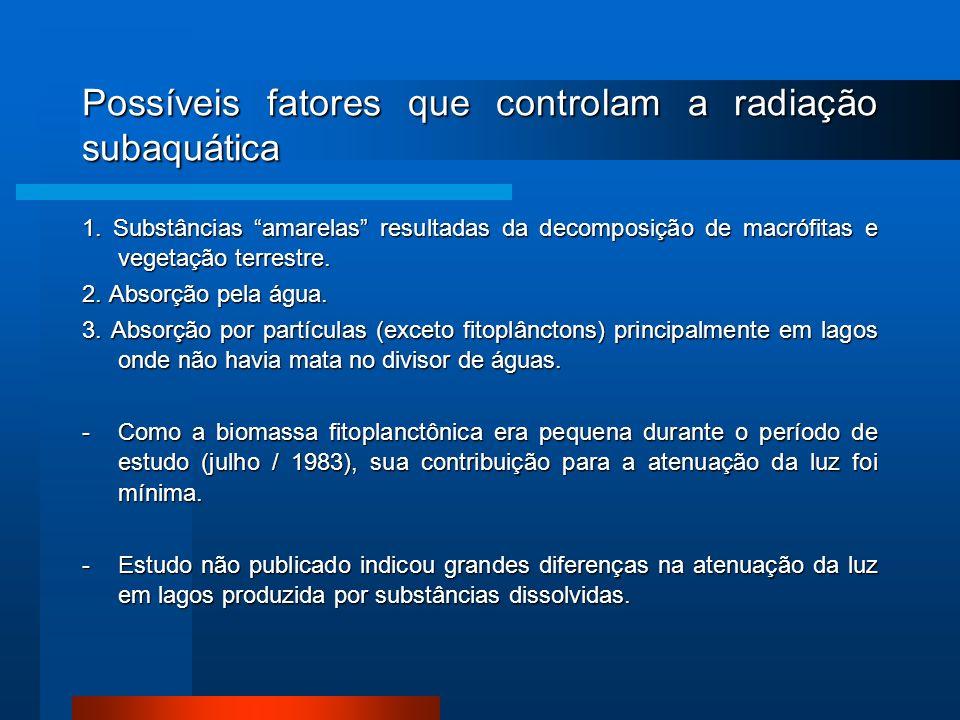 Possíveis fatores que controlam a radiação subaquática