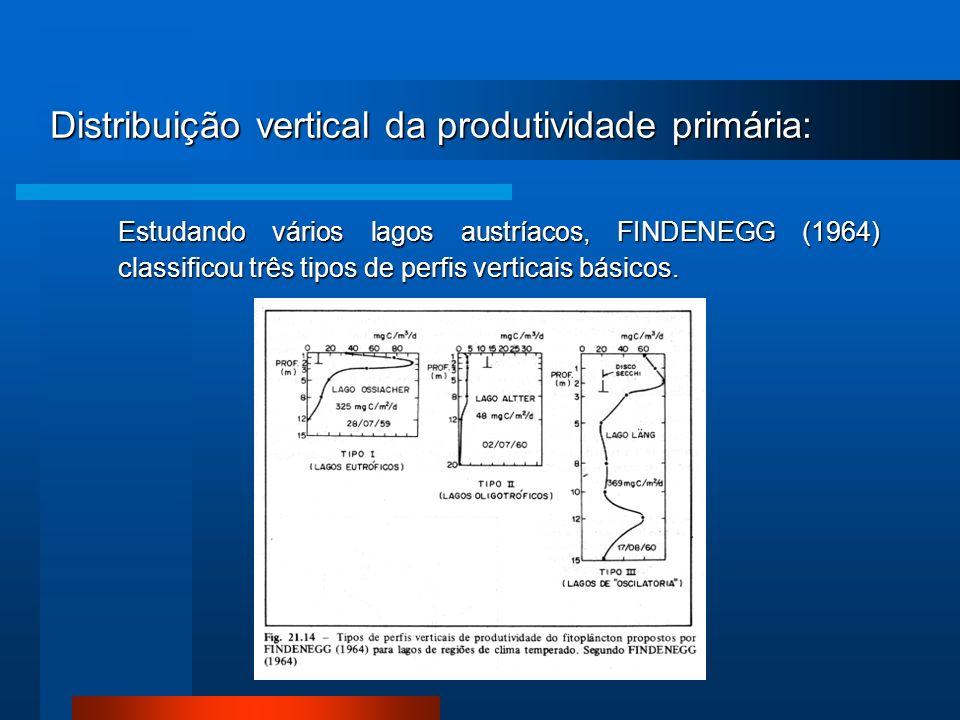 Distribuição vertical da produtividade primária: