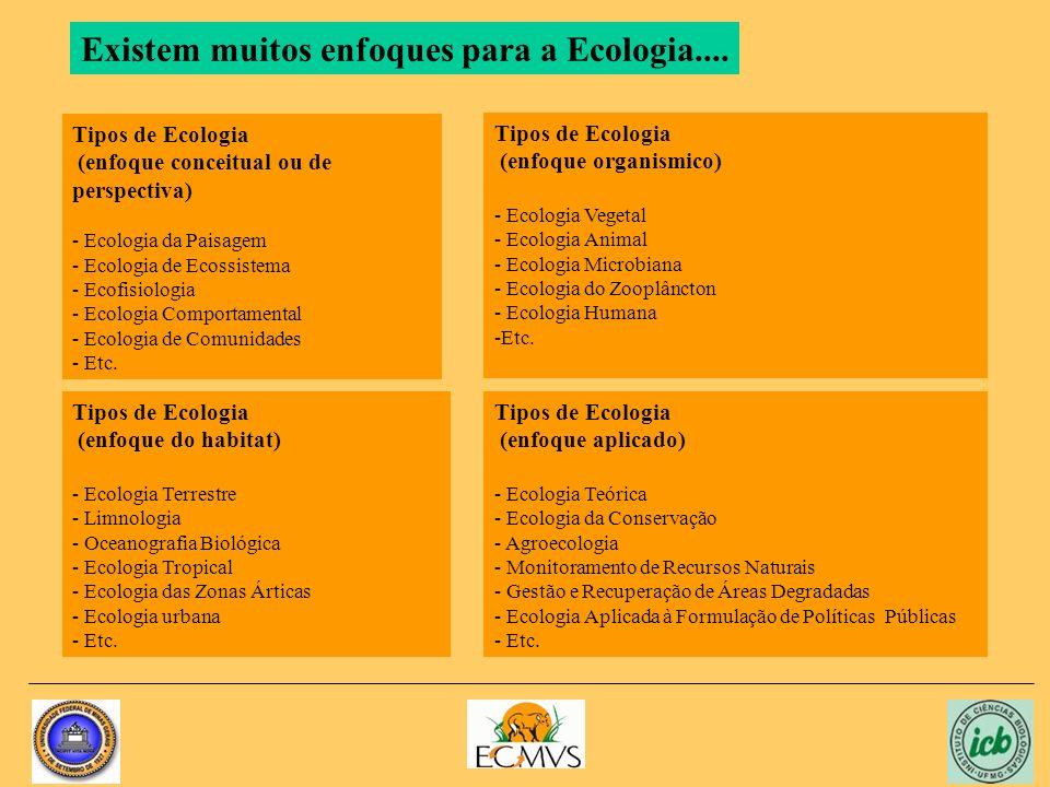 Existem muitos enfoques para a Ecologia....