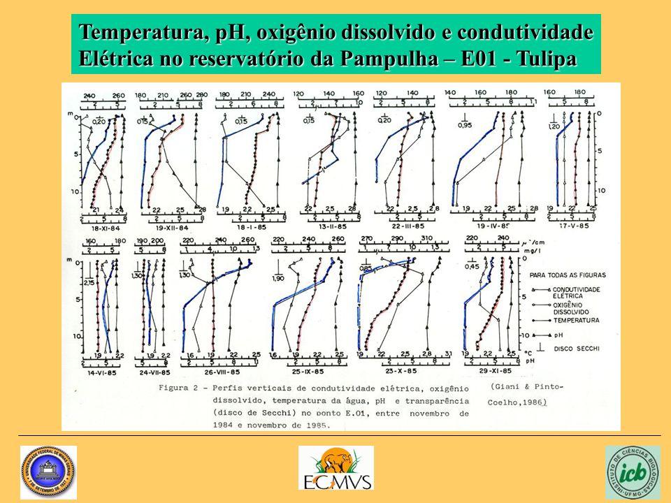 Temperatura, pH, oxigênio dissolvido e condutividade