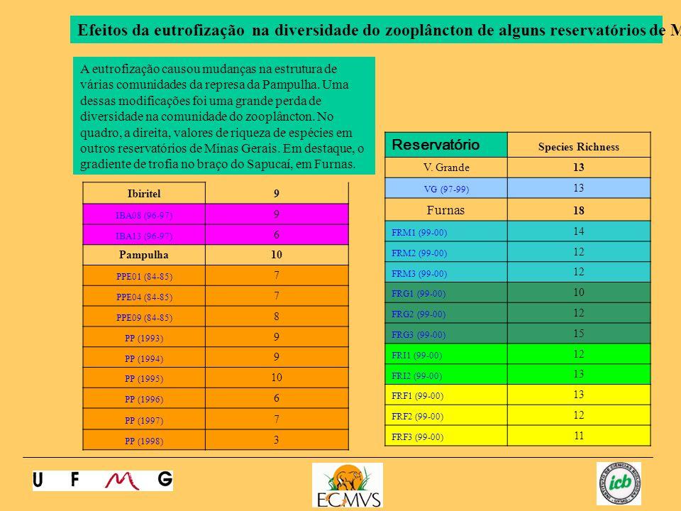 Efeitos da eutrofização na diversidade do zooplâncton de alguns reservatórios de MG.