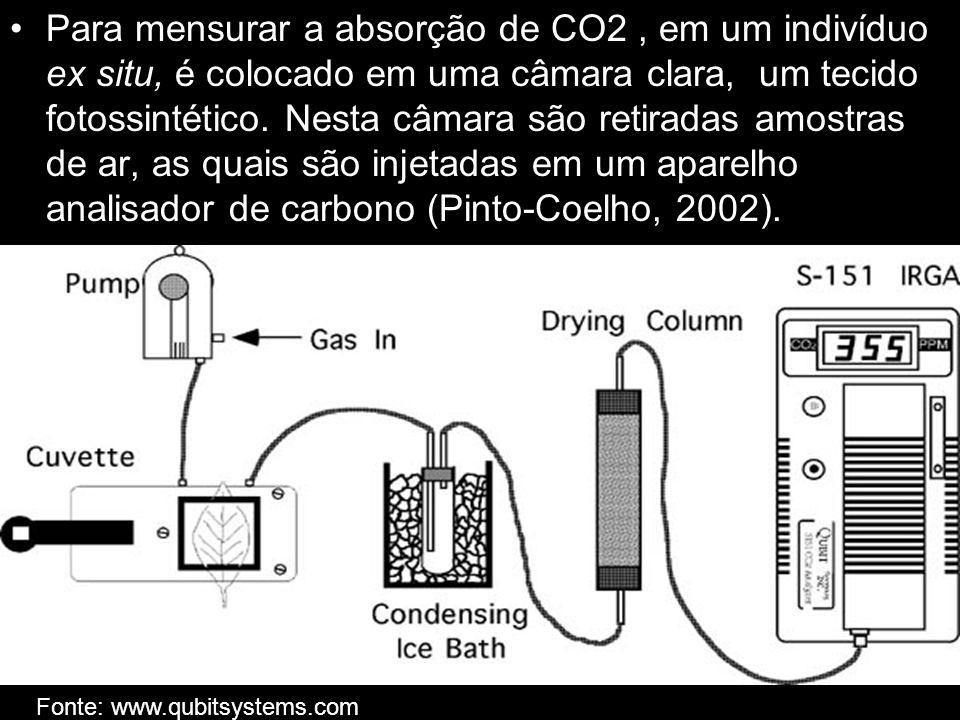 Para mensurar a absorção de CO2 , em um indivíduo ex situ, é colocado em uma câmara clara, um tecido fotossintético. Nesta câmara são retiradas amostras de ar, as quais são injetadas em um aparelho analisador de carbono (Pinto-Coelho, 2002).