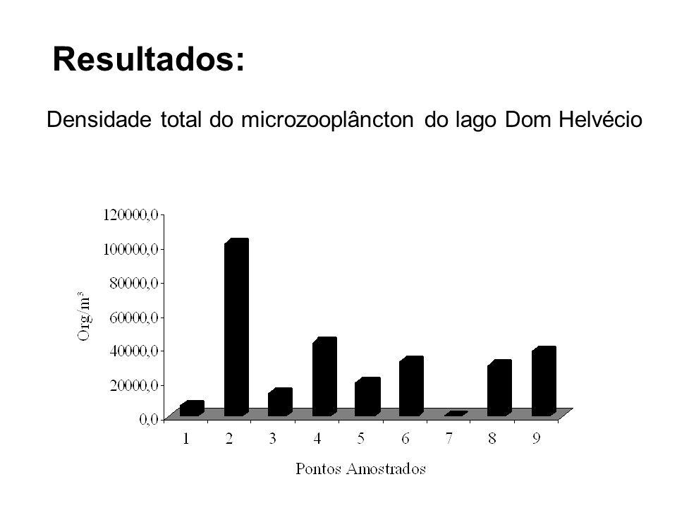 Resultados: Densidade total do microzooplâncton do lago Dom Helvécio