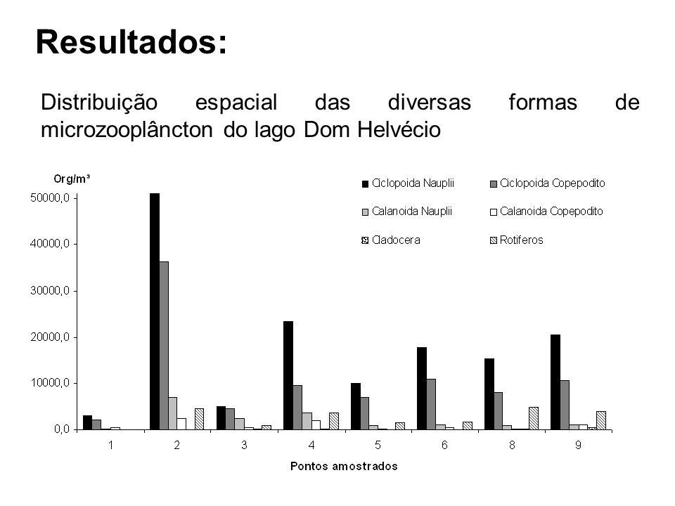 Resultados: Distribuição espacial das diversas formas de microzooplâncton do lago Dom Helvécio