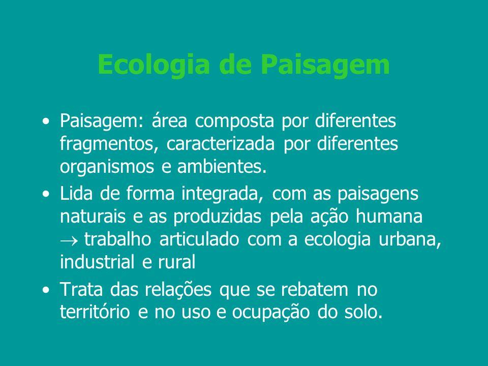 Ecologia de Paisagem Paisagem: área composta por diferentes fragmentos, caracterizada por diferentes organismos e ambientes.