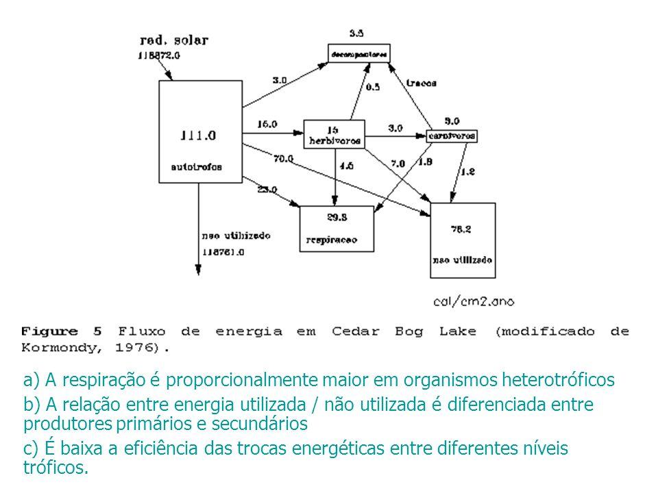 a) A respiração é proporcionalmente maior em organismos heterotróficos