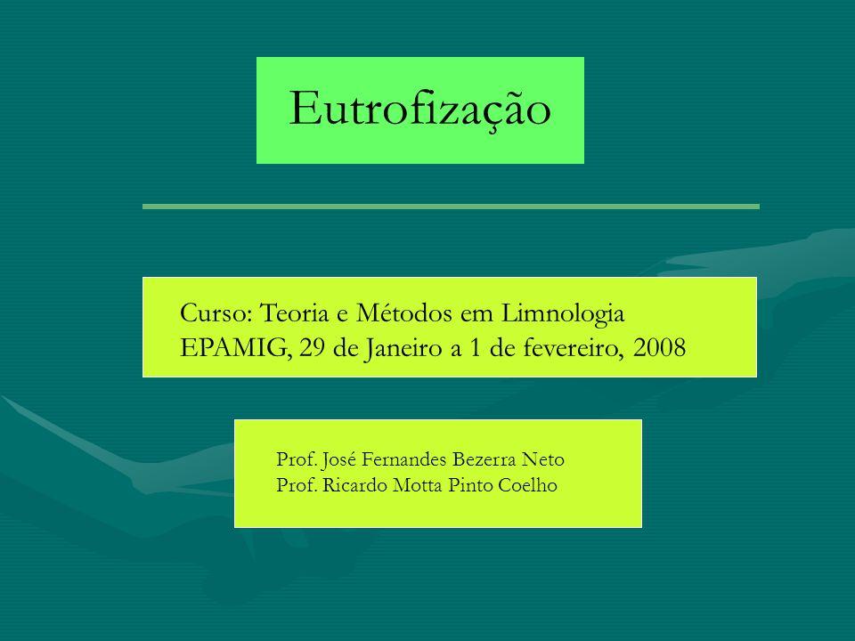 Eutrofização Curso: Teoria e Métodos em Limnologia