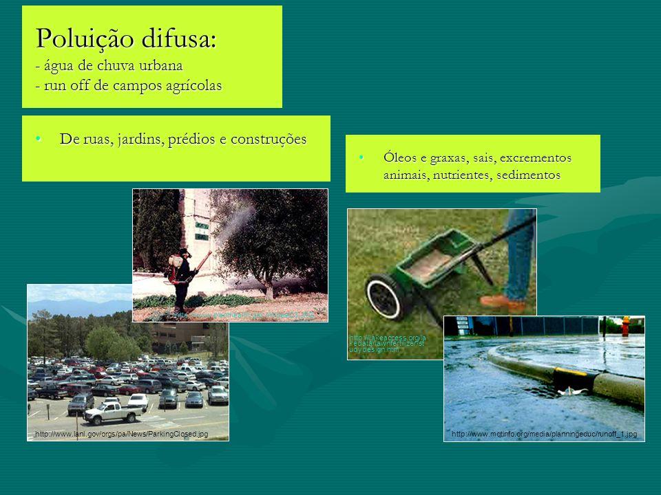 Poluição difusa: - água de chuva urbana - run off de campos agrícolas