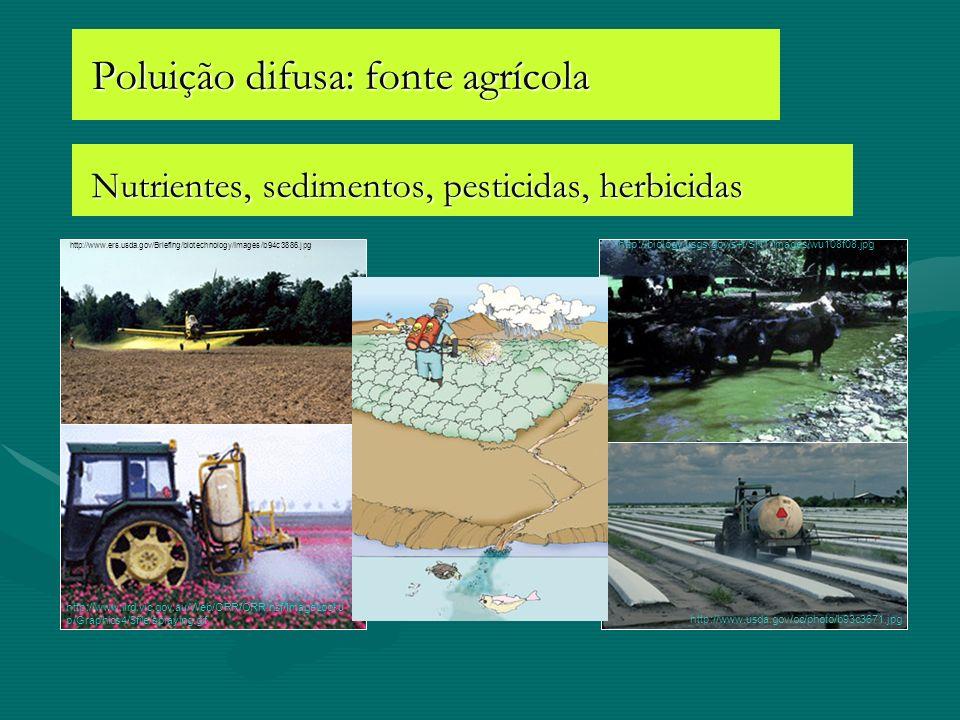 Poluição difusa: fonte agrícola