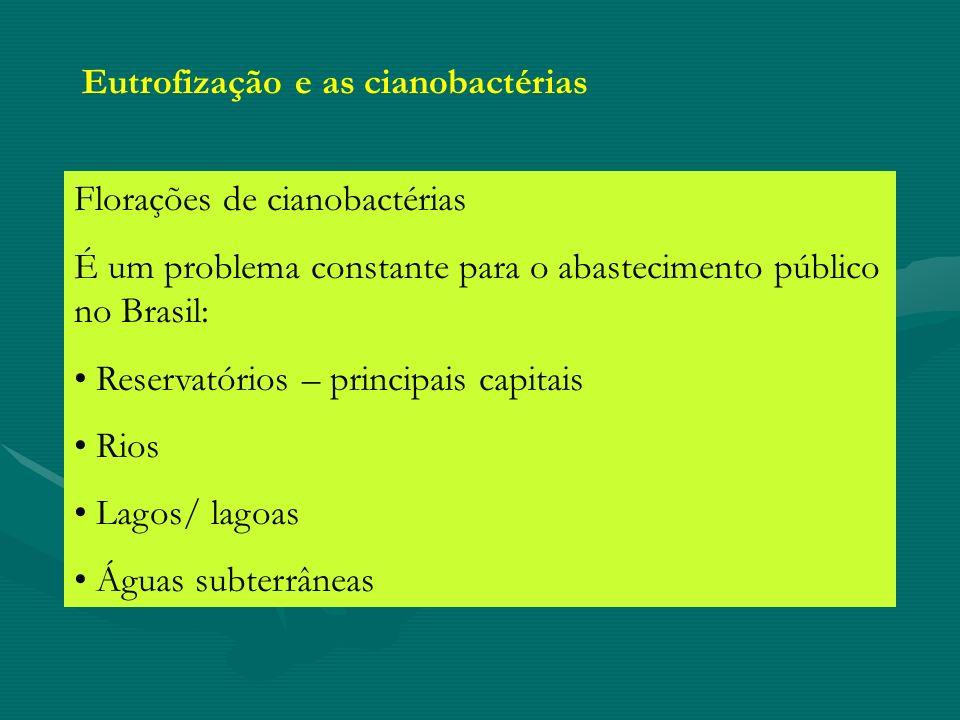 Eutrofização e as cianobactérias
