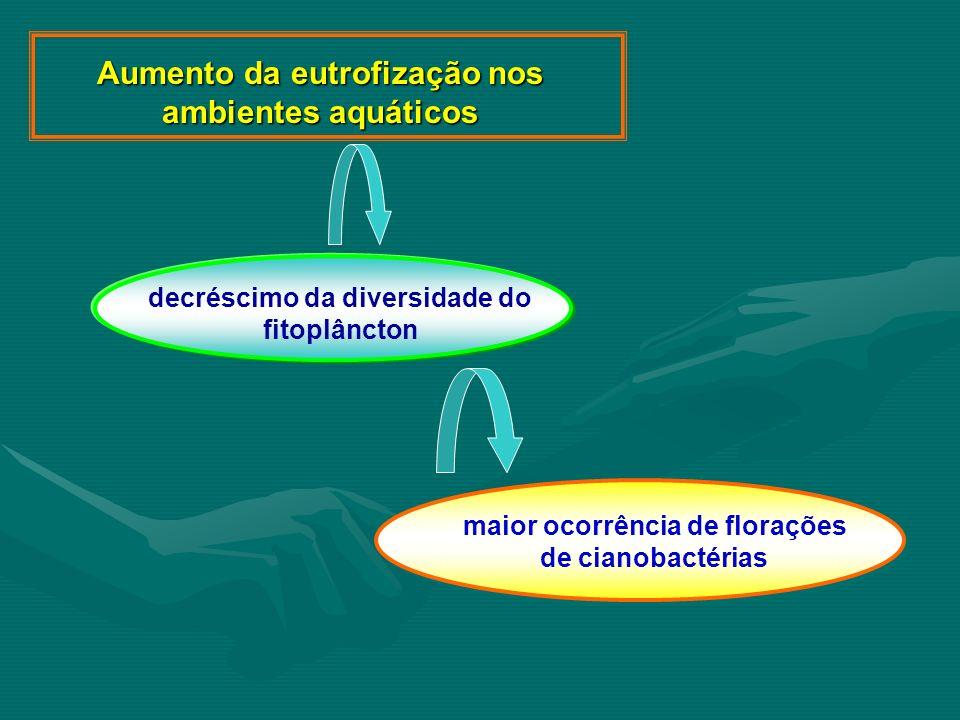 Aumento da eutrofização nos ambientes aquáticos