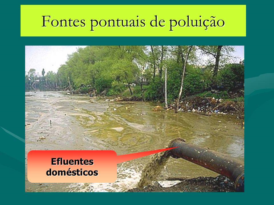 Fontes pontuais de poluição