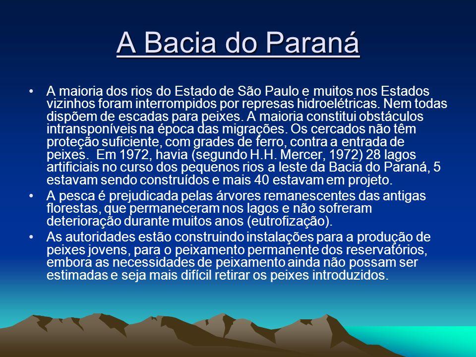 A Bacia do Paraná