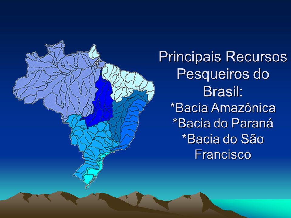 Principais Recursos Pesqueiros do Brasil:. Bacia Amazônica